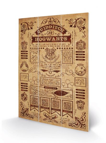 Harry Potter (Quidditch at Hogwarts) Bild auf Holz