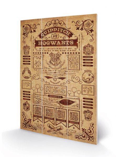 Quidditch at Hogwarts Holzbild Harry Potter