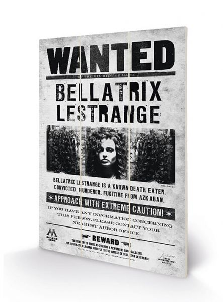 Bellatrix Wanted Holzbild Harry Potter